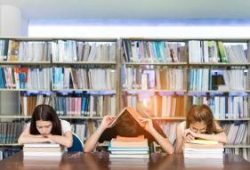 מרכז למידה והכשרה עסקית חברתית